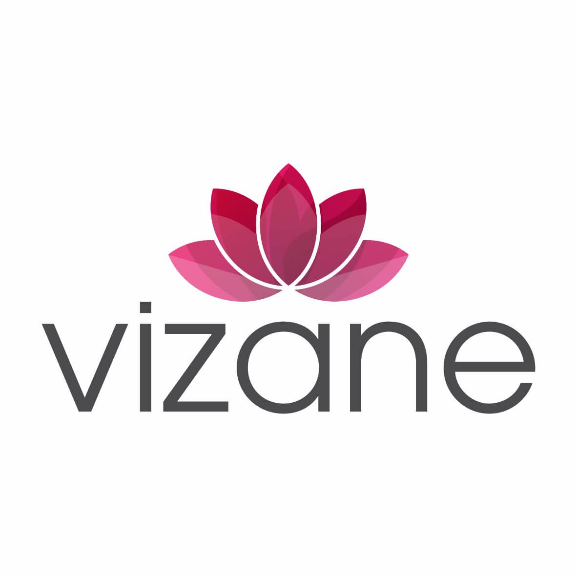 logomarca_vizane